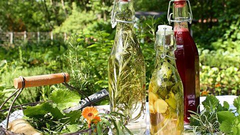 Aromatisierte Essige – Himbeerbalsamico, Kräuteressig, Koriander-Ingwer-Essig